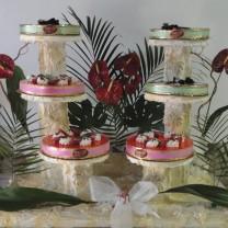 Mousses sur présentoirs décoration fleurs exotiques
